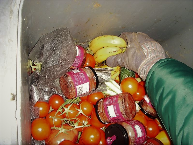 food waste developing countries